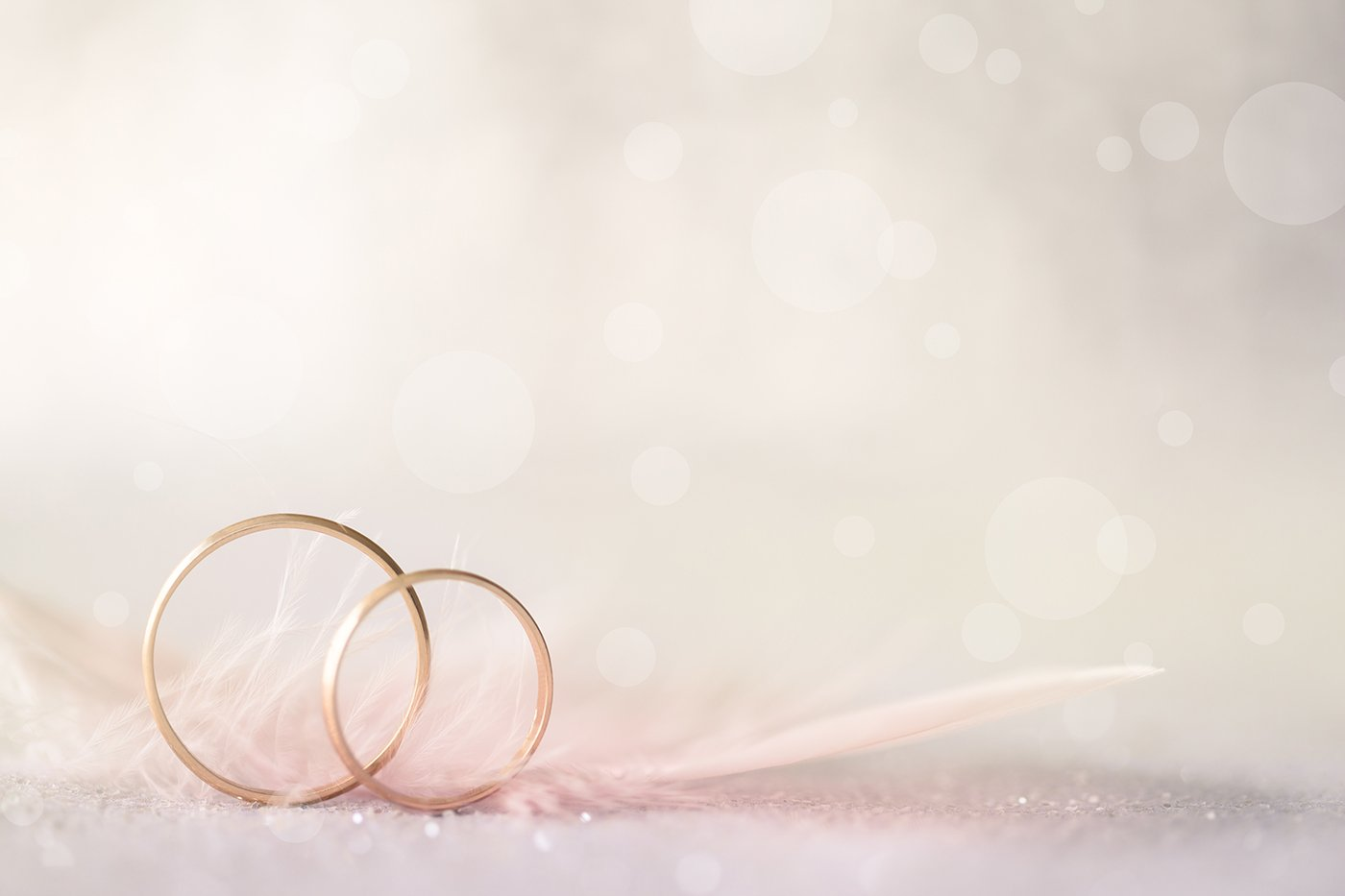 Two Golden Wedding Rings And Feather Light Soft Background Tlj